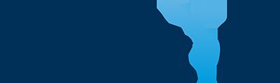EndoStim logo
